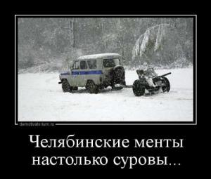 1388133905_demki-11.jpg