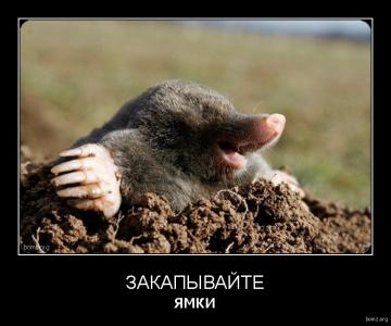 demotivator_339136-2018.02.01-11.45.19-bomz.org-demotivator_zakapiyvayite_yamki.png