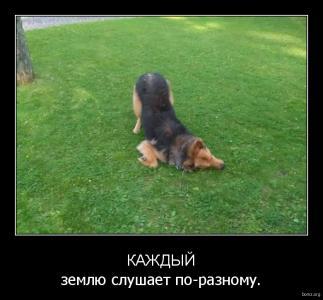 demotivator_205605-2018.02.05-08.12.17-bomz.org-demotivator_kajdiyyi_zemlyu_slushaet_po-raznomu.tmp.jpeg