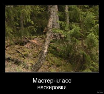 demotivator_152414-2018.02.04-05.37.58-bomz.org-demotivator_master-klass_maskirovki.tmp.jpeg