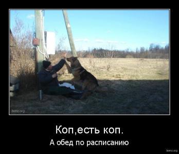 demotivator_582773-2018.02.04-01.19.06-bomz.org-demotivator_kopk_a_obed_po_raspisaniyu.tmp.jpeg