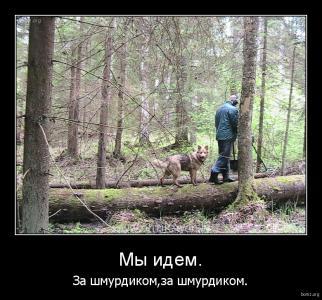 demotivator_985239-2018.02.04-05.35.29-bomz.org-demotivator_miy_idem_za_shmurdikomza_shmurdikom.tmp.jpeg