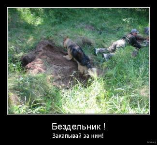 demotivator_805617-2018.02.05-08.08.21-bomz.org-demotivator_hozyain_bezdeo_zakapiyvayi_za_nim.tmp.jpeg