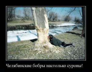 chelaybinsk17.jpg
