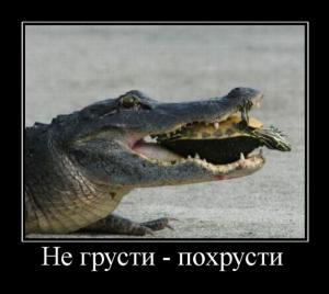 demotivatory_306.jpg