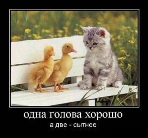 1395975417_29.jpg