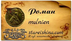 molnien ( Роман ) пример с фоном.jpg
