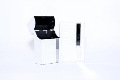 Белый KS.jpg